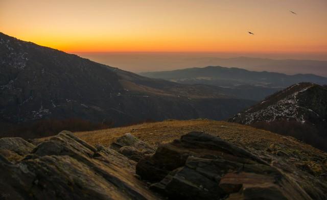 Rayski Sunrise bgp