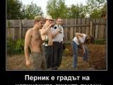 Picture: Перник е градът на истинските джентълмени