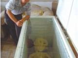 Picture: Китаец показа тялото на извънземно, което държи във фризера си (СНИМКИ)