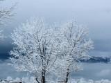 Picture: Зимата настъпи с пълна сила – ето каква е прогнозата за времето