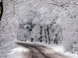 Picture: Студът остава, ще вали още сняг