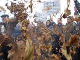 Picture: Производители на тютюн блокират пътя за Гърция