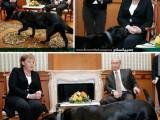 Picture: Путин се опитва да уплаши Меркел с кучето си