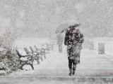 Picture: Синоптиците: Снегът ще ни връхлети изведнъж
