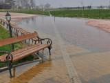 Picture: Дунав заля островите при Силистра, водата се покачва