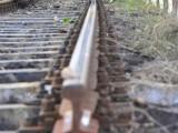 Picture: Свлачище в Япония извади влак от релсите