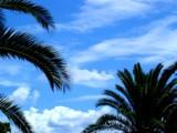 Picture: България ще заприлича на Гърция – поне по климата