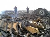 свалянето на малайзийския самолет