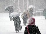 Picture: Студ и сняг от днес, идва истинската зима