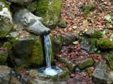 Живата вода в село Боснек