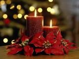 Picture: Честито Рождество Христово!