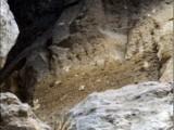 Picture: Историческо откритие край Крепча! (Намериха най - стария кирилски надпис)