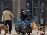 Picture: 750 000 души или всяко четвърто домакинство в България живее в мизерия