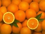 Опасни ГМО портокали