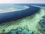 Picture: Има риск големият бариерен риф да се превърне в сметище