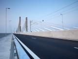 Picture: Протест блокира Дунав - мост