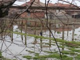 Picture: Десетки наводнени къщи в Мало Конаре – министри отидоха на крака при пострадалите