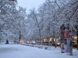 Picture: 4 милиона лева струва чистенето на София за петте дни обилен сняг