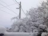 Над 500 населени места остават без ток