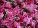 Picture: София става цветна градина