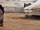 Picture: ООН призова България да разследва смъртта на двама иракчани